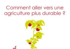 apercu-permaculture