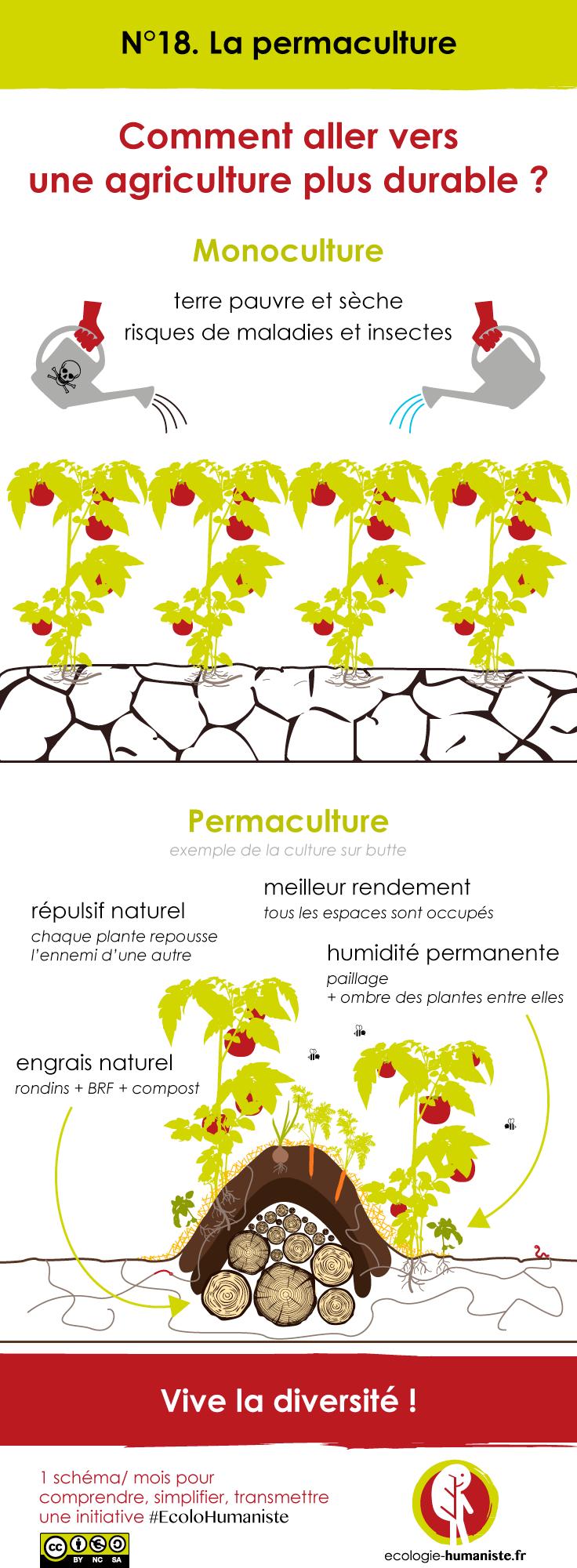 La permaculture en un sch ma for Culture sur butte permaculture