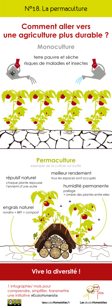 Permaculture - Agriculture durable - infographie